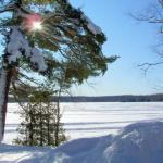 Cabin 1 view of lake in winter